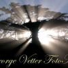 George Vetter FotoArt