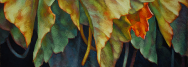 Featured visual artist in June is Sheila Evans.