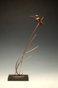 1000-BCG-Rambadt-Allens_Hummingbird
