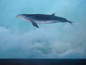 ARCH-AmyRuppel-FlyingWhale