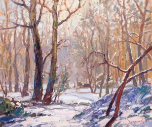 DF-AntonPavlenko-SnowyWoods